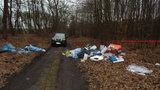 Małopolska. Rekordowa kara za zaśmiecanie lasu