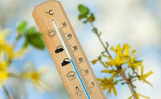 Mamy najgorętszą zimę w historii pomiarów w Europie