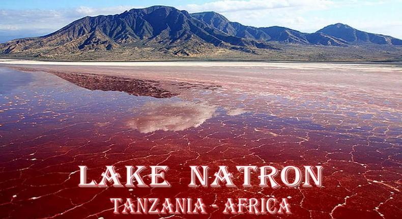 Lake Natron is a beautiful yet deadly place that turns animals to stone (Youtube/Rodica Madan)