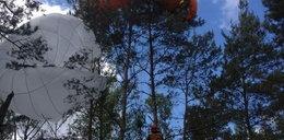 Poważny wypadek paralotniarza. Mężczyzna zawisł na drzewie!