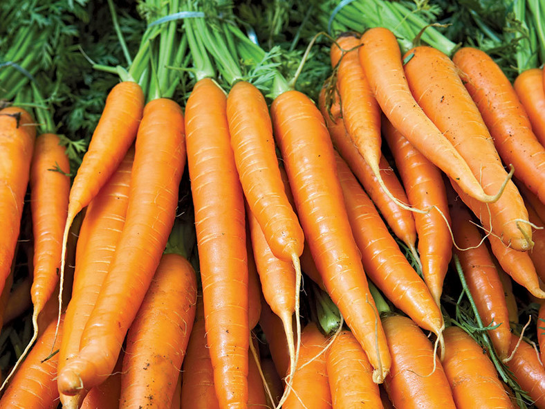 Carrot is loaded with beta-carotene, an antioxidant that's also a precursor for vitamin A [Britannica]