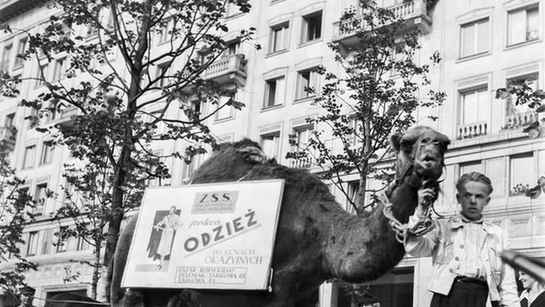 Reklama była dźwignią handlu także w latach 50. Sklep, który tak pomysłowo się reklamował, mieścił się na popularnym warszawskim bazarze Różyckiego. Scena odbywa się na pl. Konstytucji. Data nieznana.