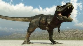 Zagładzie dinozaurów towarzyszyło wymieranie jaszczurek i węży