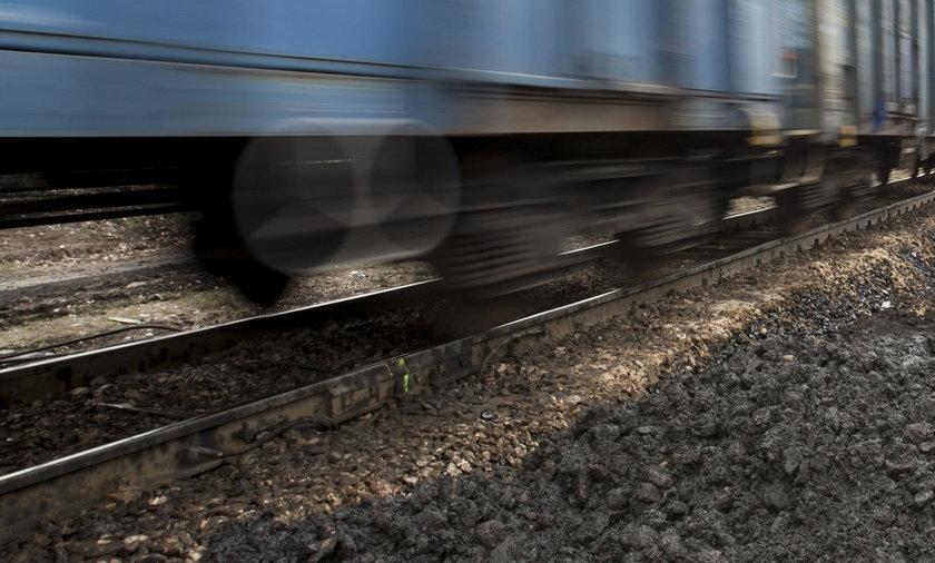 Ratując psa wpadła pod pociąg