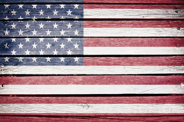 Wzrost gospodarczy w USA wyniósł 1,8% kw/kw (w ujęciu zanualizowanym) w I kw. 2013 roku.