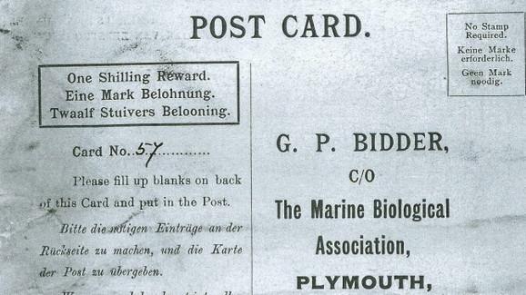 Poruka koja se u moru očuvala punih 100 godina