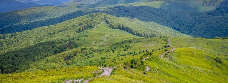 Połonina Wetlińska, Bieszczady, przyroda