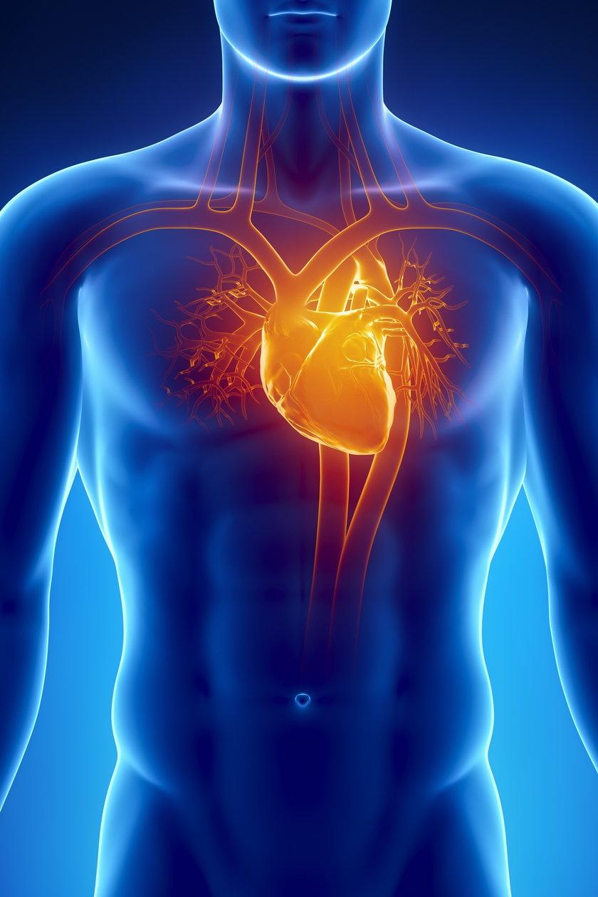 Choroby układu krążenia są największym zagrożeniem dla zdrowia Polaków, a spośród nich, za największą liczbę zgonów odpowiada choroba wieńcowa, w tym przede wszystkim zawał serca