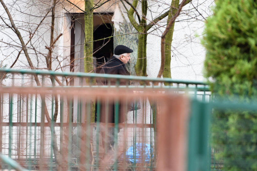Jarosław Kaczyński taszczy choinkę do domu