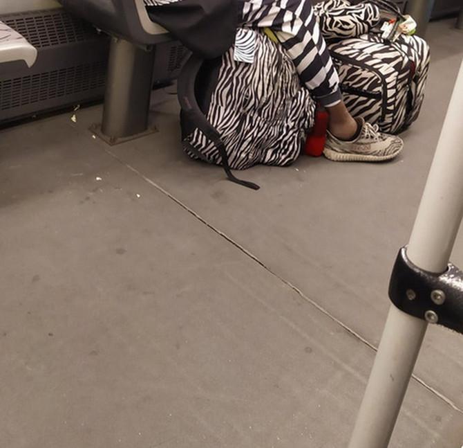 Ceo tramvaj gledao je u ovog gospodina