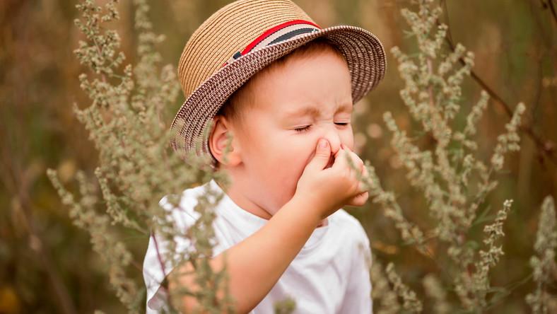 Chłopiec kicha, alergia. Uczulone dziecko