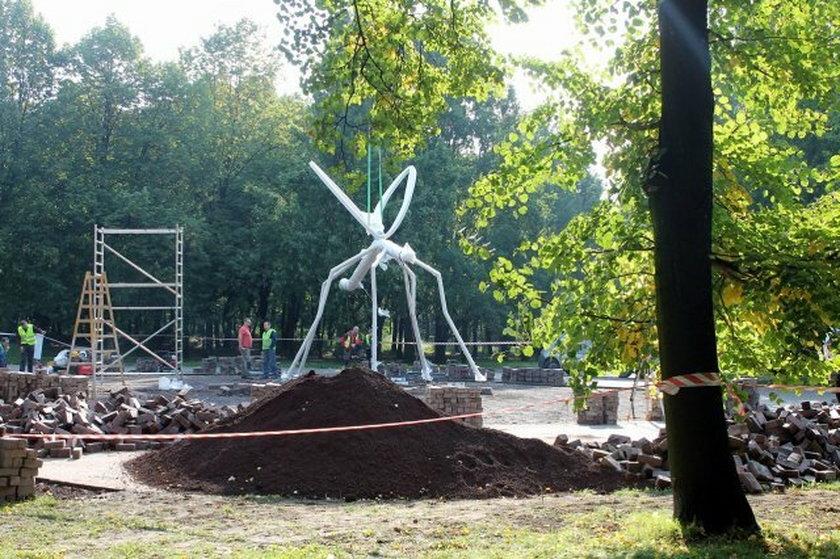 Wielki komar w Parku Śląskim