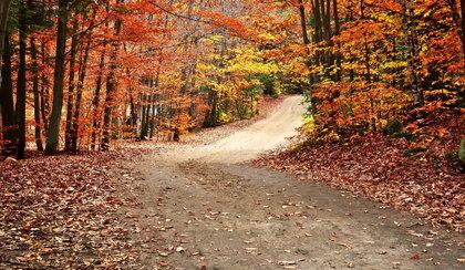 Złota jesień czy pierwszy śnieg? Długoterminowa prognoza pogody