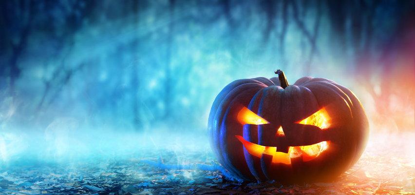 Szukasz kostiumu i dekoracji na Halloween? Sprawdź, jaką ofertę ma Biedronka, Lidl i Pepco!