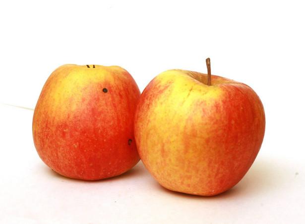 Polska pozostała głównym dostawcą jabłek do Rosji.