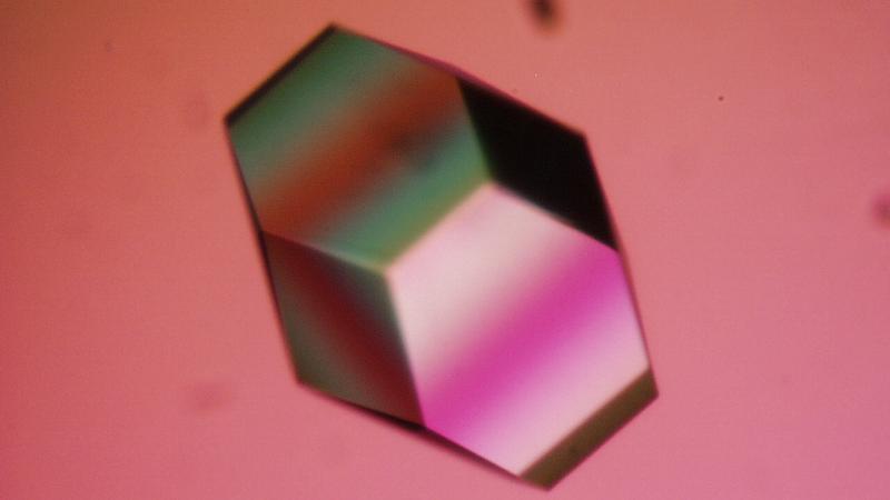 Kryształ lizozymu