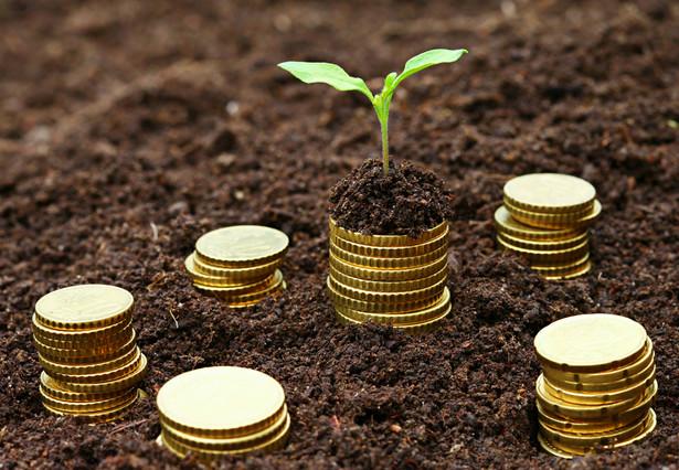 Pieniądze a ekologia