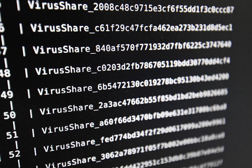 Atak hakerski na Europę