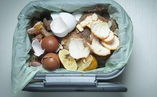 Duda: Przeciwdziałanie marnowaniu żywności jednym z priorytetów polityki społecznej Polski