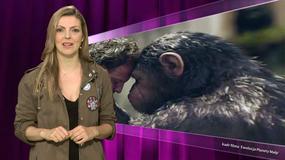 """Wyznanie Kamilli Baar i skargi na zwiastun """"Ewolucji Planety Małp"""" - Flesz Filmowy"""