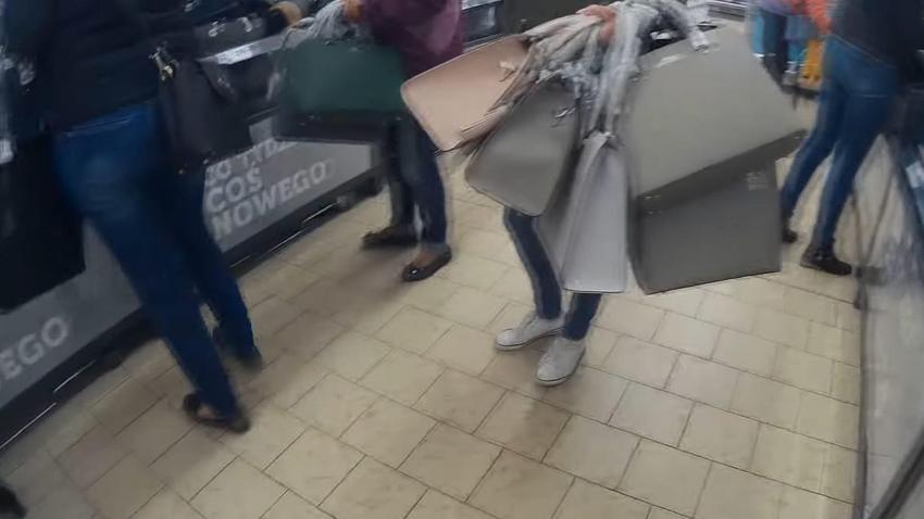 149493c3b9be5 Torebki Wittchen w Lidlu. Walka o torebki, kupują na zapas
