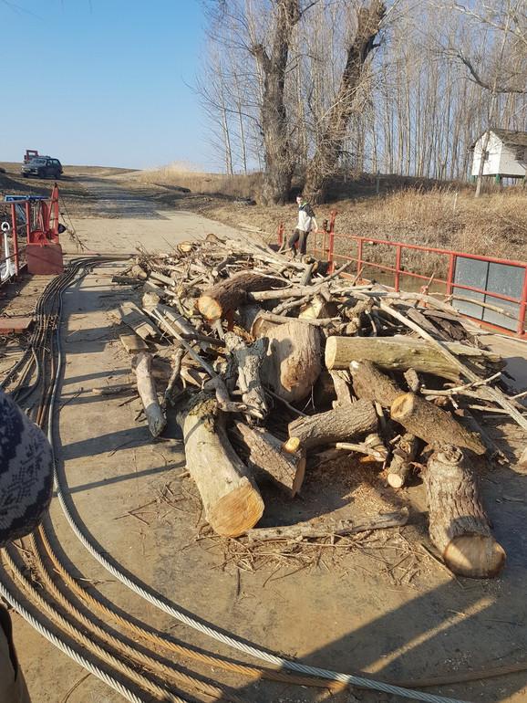 Šumokradice koriste skelu za prevoz drva sa jedne na drugu obalu
