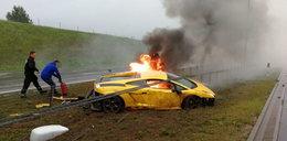 Dramat na A1. W kilka chwil z dymem poszły setki tysięcy złotych. ZDJĘCIA