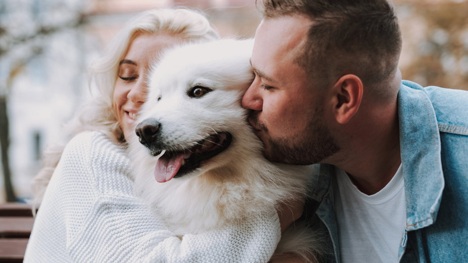 Jakie psy adoptują kobiety, a jakie wybierają mężczyźni?