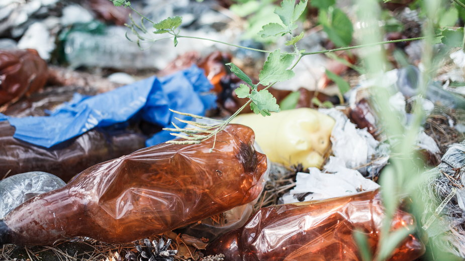 Śmieci w lasach to duży problem