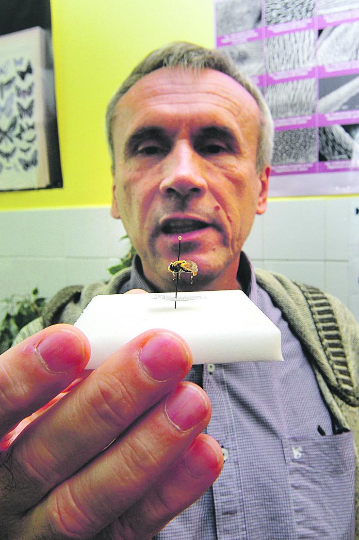 Novi Sad 118 Ante Vujic ekspedicija u juznu Afriku potraga za muvama farma muva foto Robert Getel