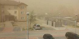 Burze piaskowe, susza, pożary! Polska jak Afryka