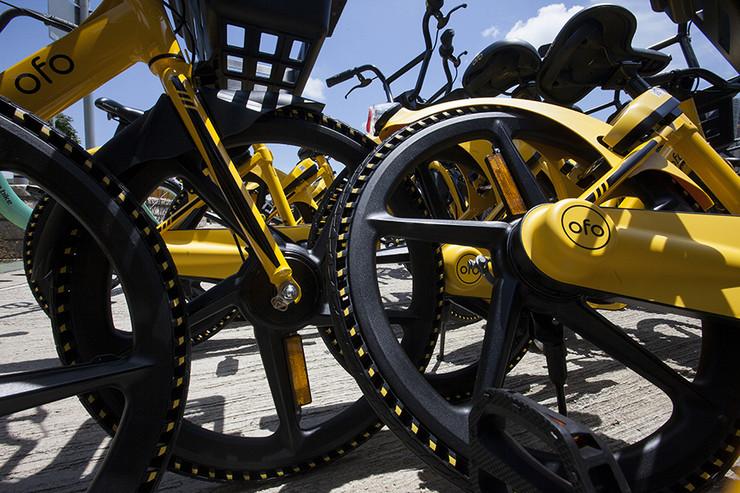 AUSTRIJSKU POLICIJU TRAG DOVEO U RS Krali skupocene bicikle