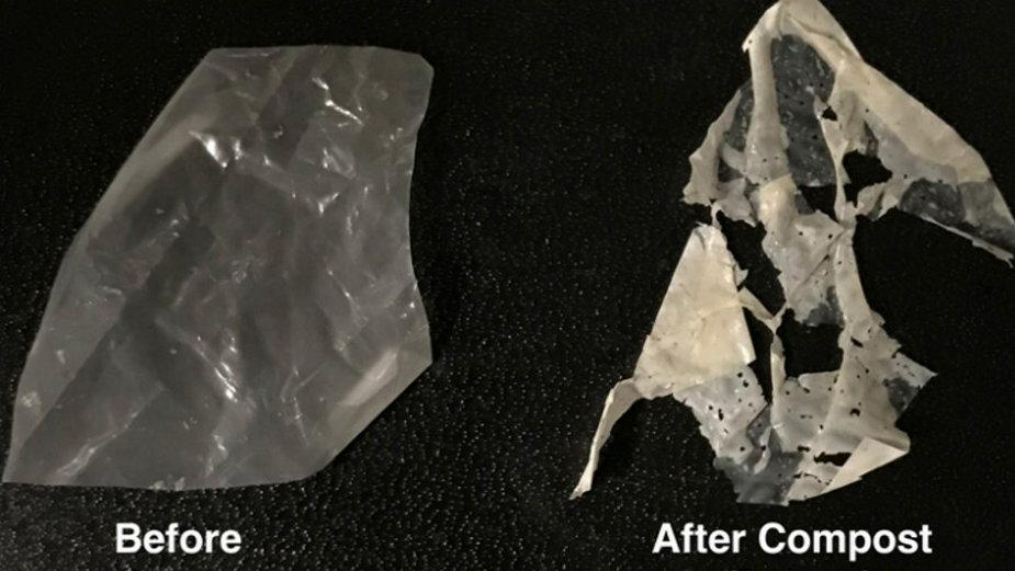Kompostowalny plastik (fot. UC Berkeley/ Ting Xu)
