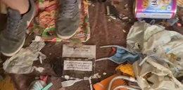 Melina zawalona śmieciami, a w niej skamlące psy i koty. Nigdy stamtąd nie wychodziły [FILM Z UKRYCIA]