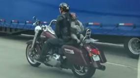 Pies na motocyklu pędzi po autostradzie