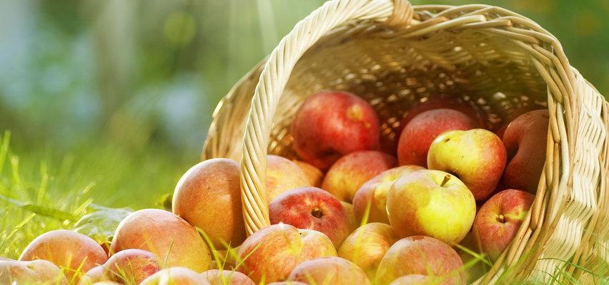 Światowy dzień jabłka. Wiesz dlaczego ten owoc to prawdziwy skarb?