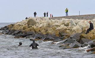 W morzu znaleziono ciało chłopca. To prawdopodobnie ostatni z trójki rodzeństwa, która utonęła w Darłówku