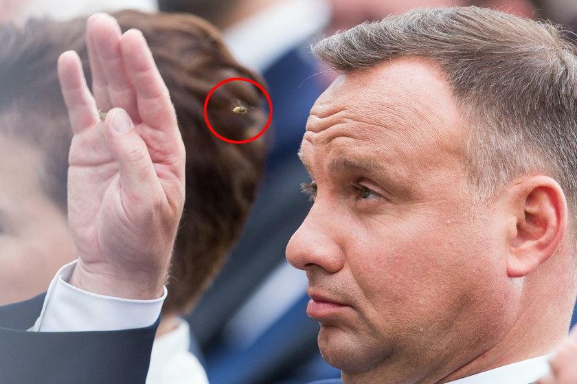 Andrzej Duda walczy z natrętną osą