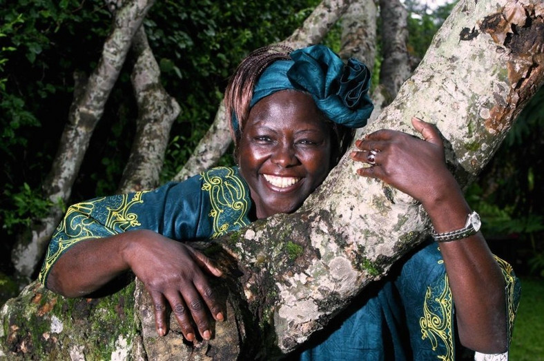 Wangari Maathai. (Citizen TV)
