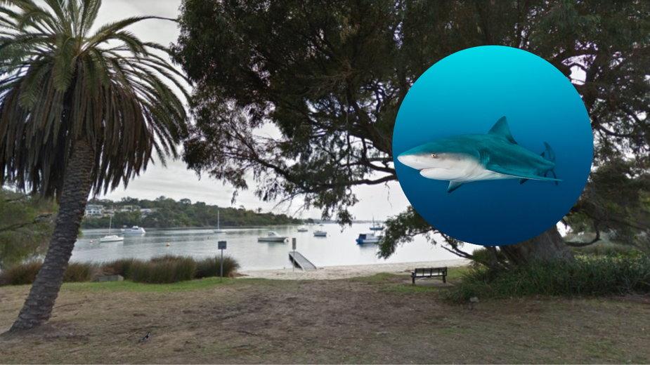 Plaża Blackwall Reach nad Łabędzią rzeką w Perth, Australia