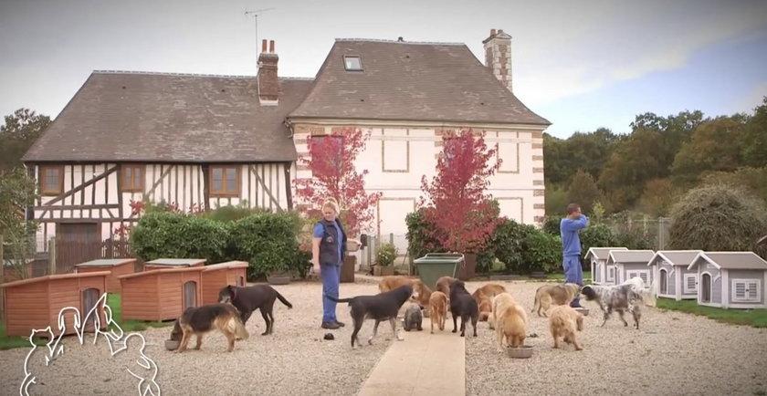 Schronisko dla maltretowanych zwierząt założone przez Brigitte Bardot