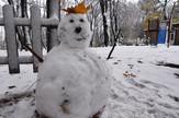 Novi Sad317 prvi sneg na fruskoj gori iriski venac foto Nenad Mihajlovic