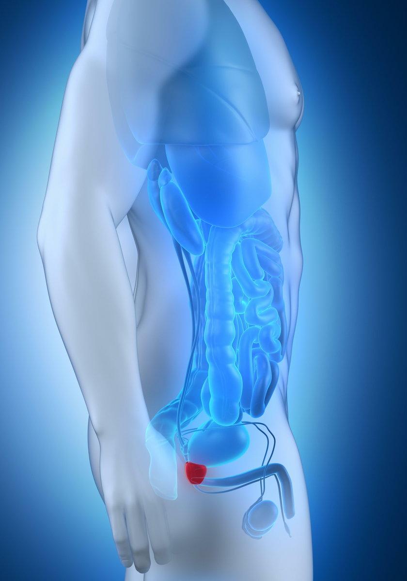 Profilaktyka zaczyna się od dwóch badań. To badanie badanie gruczołu palcem przez odbytnicę oraz badanie stężenia PSA we krwi. Regularnie, raz na rok, zaczynając od pięćdziesiątego roku życia. U mężczyzn z obciążeniem genetycznym już po czterdziestce