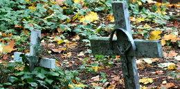 Byli gwałceni, bici, a na koniec pogrzebani żywcem. Dramat nastolatków na cmentarzu