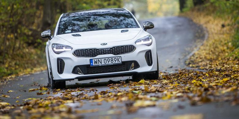 Uwaga na spadające liście na drodze!