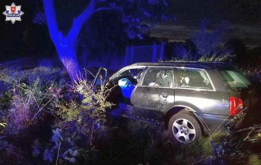 Kierowca uderzył w drzewo