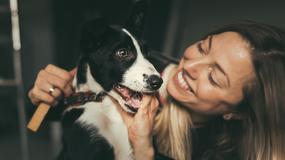 Psy umilą czas oczekiwania na samolot i pomogą uporać się ze stresem