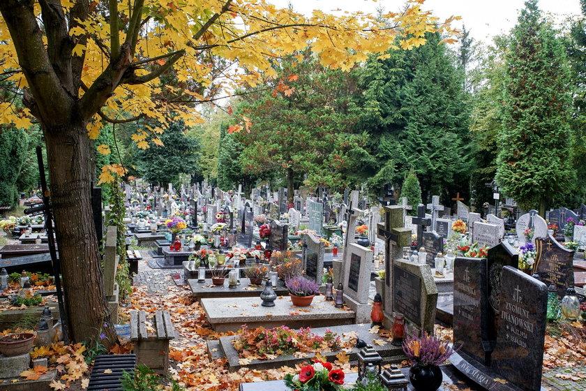Cmentarz Łostowicki w Gdańsku.