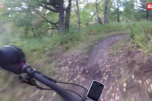 Ne bismo mu bili u koži: Vozio je bicikl kroz šumu, a onda je iskočio MEDVED (VIDEO)