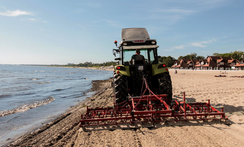 sprzątanie plaży